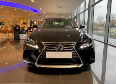 Lexus IS 300h Pack Business 2020