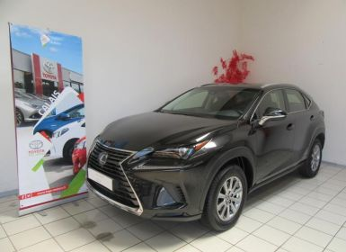 Vente Lexus NX 300h 2WD Business Occasion