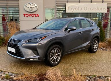 Lexus NX 300h 2WD Pack Occasion