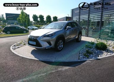 Lexus NX 300h 4WD Pack Business Occasion