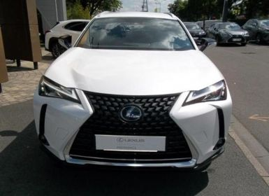 Acheter Lexus UX 250h 4WD Luxe Occasion