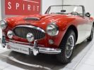 Austin Healey 3000 MK2 BJ7 Colorado Red / Old English Whi Occasion - 12