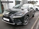 Lexus NX 300h 4WD Luxe Occasion
