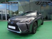 Lexus UX 250h 4WD Luxe Occasion