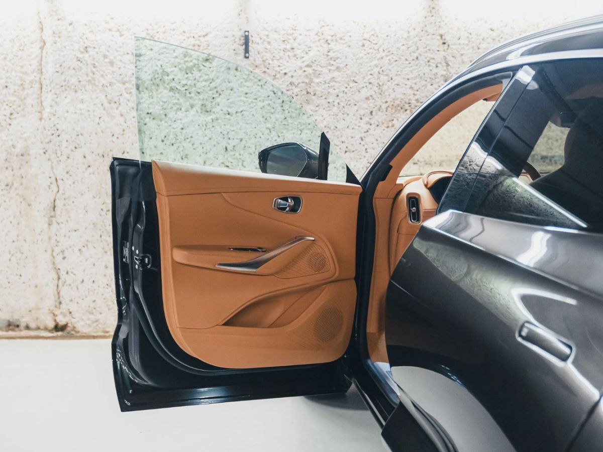 Aston Martin DBX Vert Foncé - 25