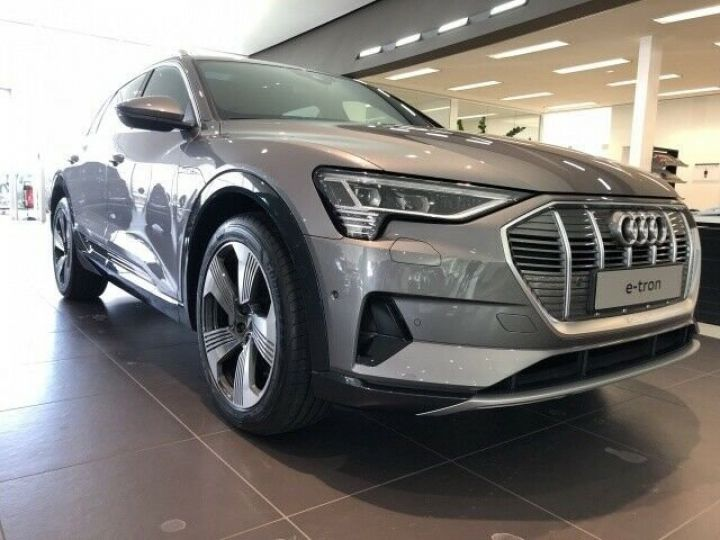 Audi E-tron 55 QUATTRO GRIS  - 2