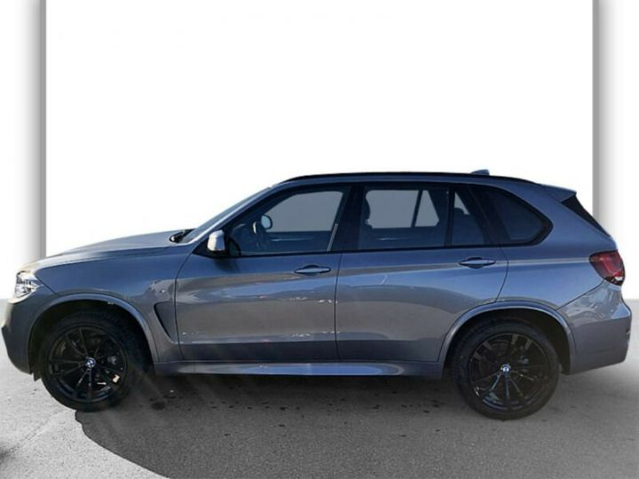 BMW X5 BMW X5 xDrive30d M Sport 16cv (258ch) Gris Foncé Grey - 2