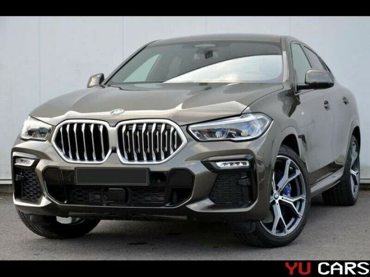BMW X6 Gris métallisée  - 1