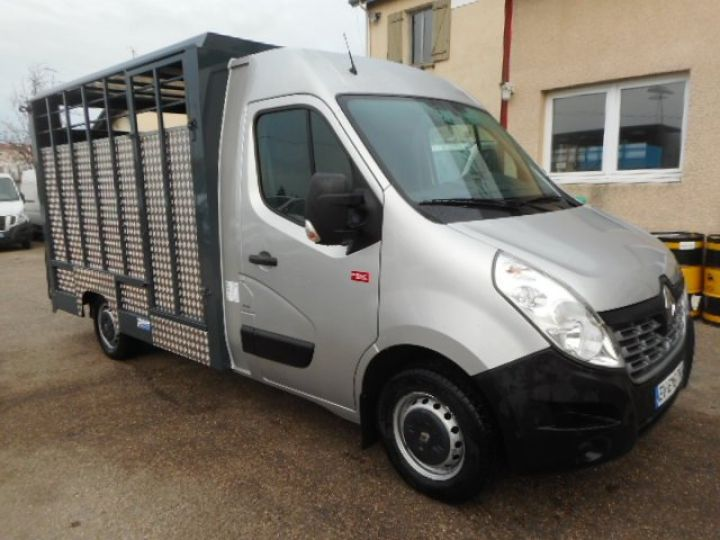 Chassis + body Renault Master Livestock body BETAILLERE DCI 130  - 1