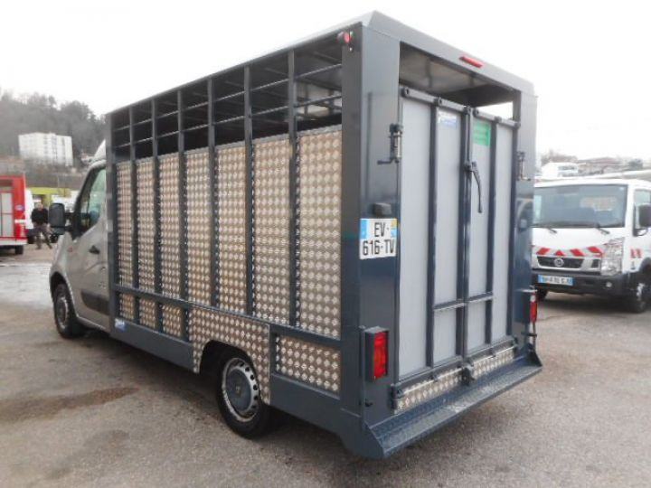 Chassis + body Renault Master Livestock body BETAILLERE DCI 130  - 4