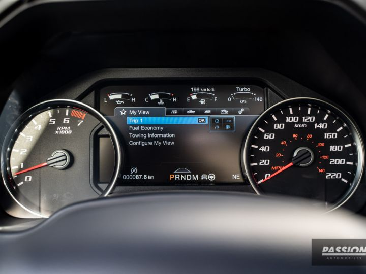 Ford F150 2020 Raptor 802A Luxury Ford Co-Pilot360 Assist 64D 55G 55R - - 17