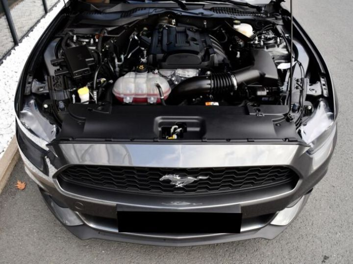 Ford Mustang 2.3 ECOBOOST 317CH BVA6 GRIS Occasion - 7