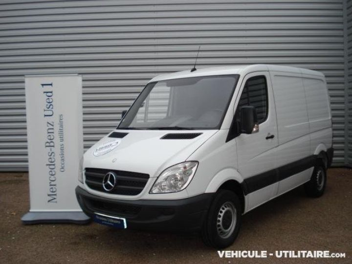 Light van Mercedes Sprinter Steel panel van 313CDI 32N  - 1