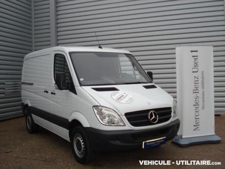 Light van Mercedes Sprinter Steel panel van 313CDI 32N  - 4