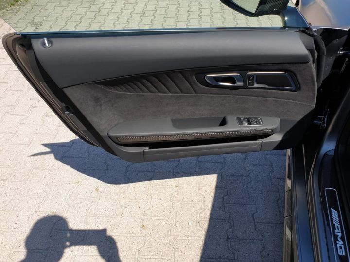 Mercedes AMG GT AMG GT-R Pro Gris - 10