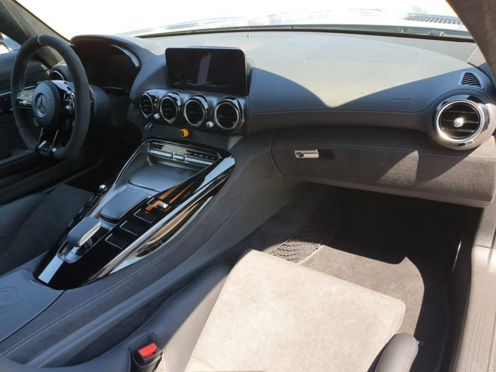 Mercedes AMG GT AMG GT-R Pro Gris - 17