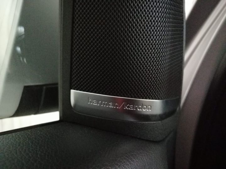 Mercedes Classe GL 350 CDI 258 CV 4MATIC BVA 7PL Gris - 14