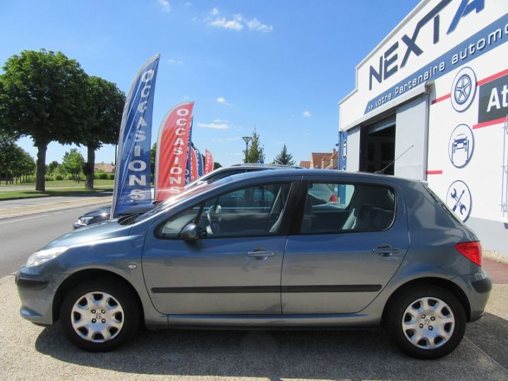 Peugeot 307 1.6 HDI90 EXECUTIVE 5P Gris Clair Occasion - 5
