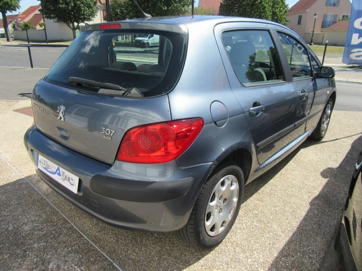 Peugeot 307 1.6 HDI90 EXECUTIVE 5P Gris Clair Occasion - 9