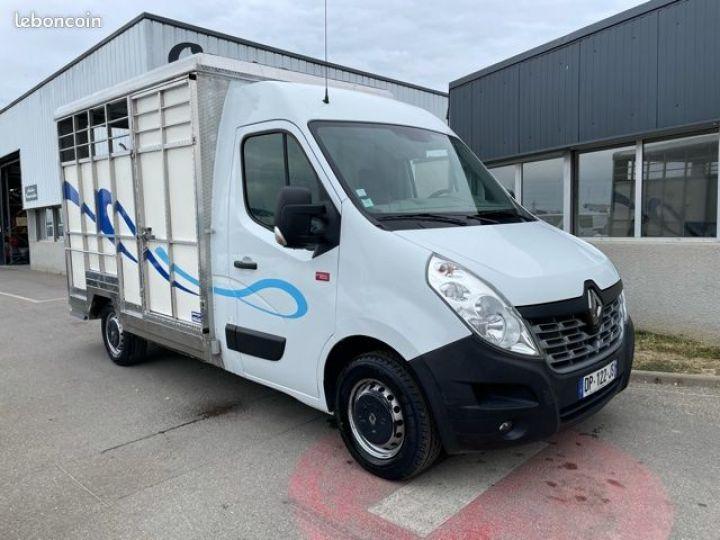 Renault Master bétaillère inox avec cloison  - 1