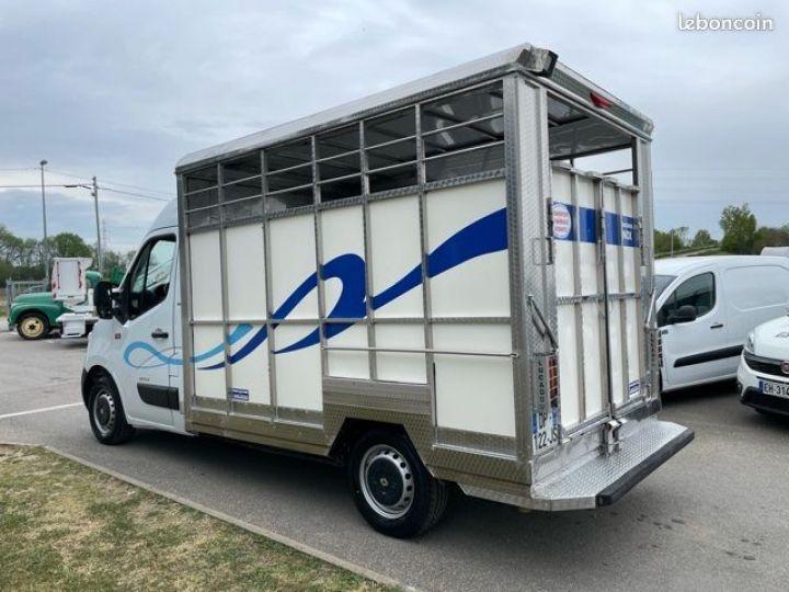 Renault Master bétaillère inox avec cloison  - 5
