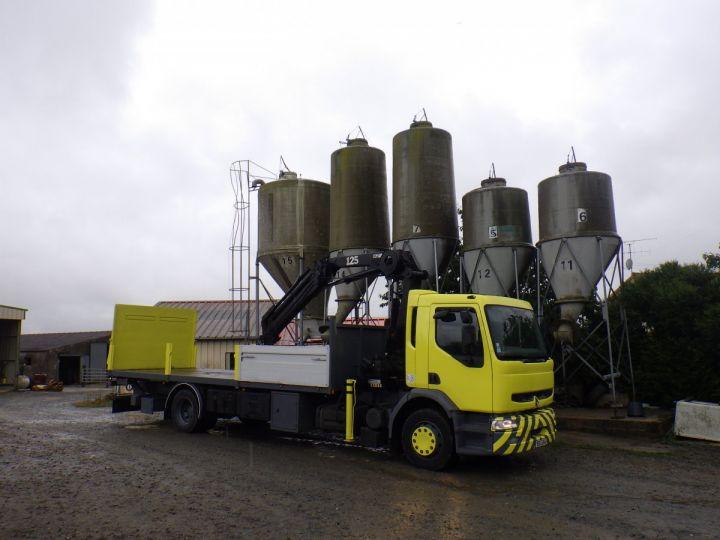 Trucks Renault Platform body + crane Jaune - 1