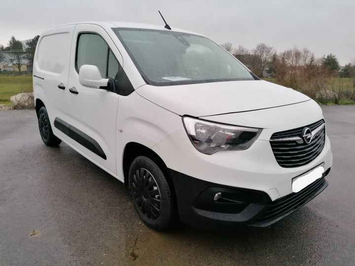 Utilitaire léger Opel Combo Fourgon tolé BLANC - 4
