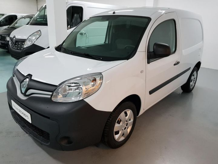 Utilitaire léger Renault Kangoo TCE 115 ENERGY E6 EXTRA R-LINK blanc - 1