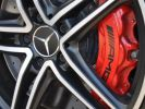 Mercedes AMG GT ROADSTER C 557CH Blanc  - 21