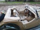 Morgan Roadster ROADSTER  3.7 L V6 BICOLORE VERT ET OR  - 9