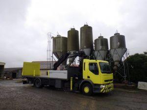 Camion porteur Renault Plateau + grue Occasion