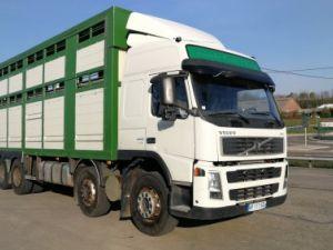 Camión Volvo FM Transporte de ganado FM 440 8X4  Occasion