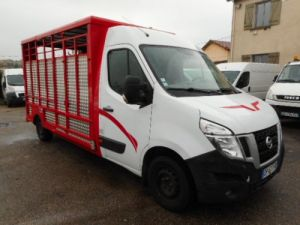 Chassis + body Nissan NV400 Livestock body DCI 165 BETAILLERE Occasion