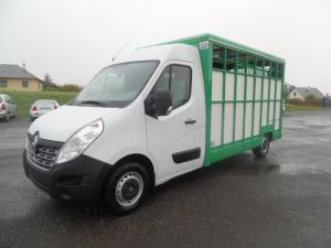 Chassis + body Renault Master Livestock body DCI 135CV GRAND CONFORT  Occasion