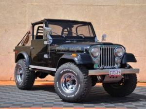 Jeep CJ7 5.0L V8 304 GOLDEN EAGLE Occasion