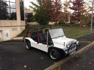 Mini Moke Occasion