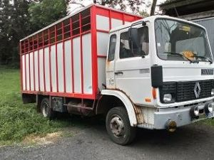 Trucks Renault S Occasion